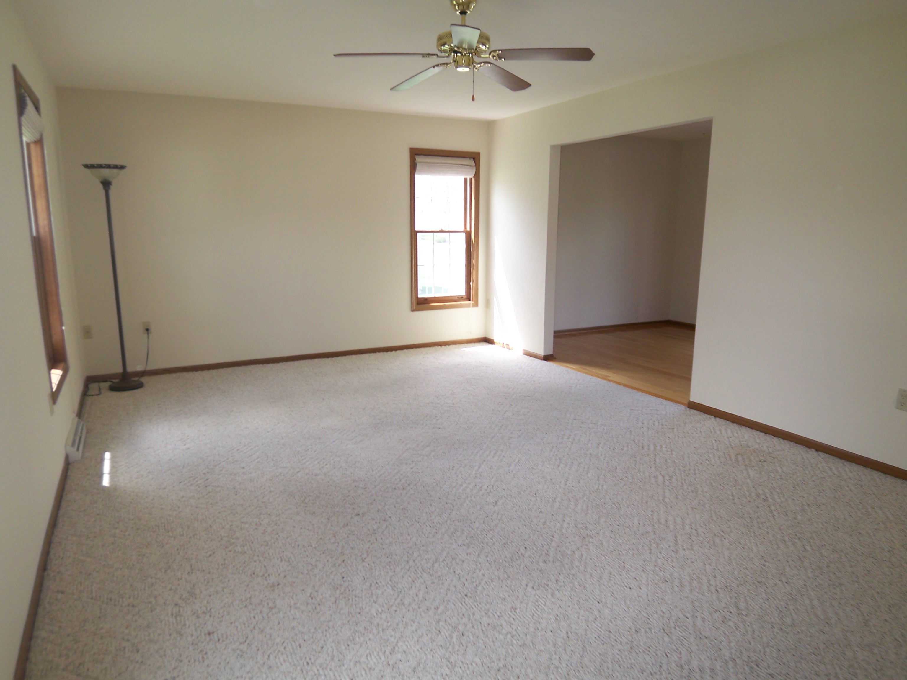 Empty Living Room With Carpet
